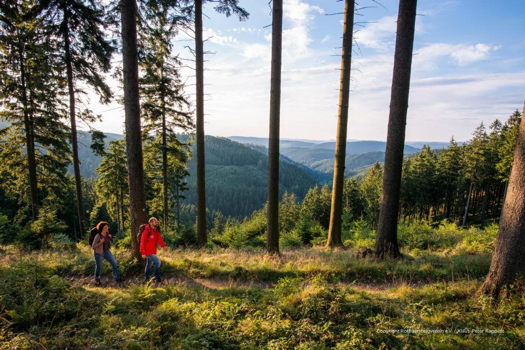 """Wanderer unterwegs auf dem Rothaarsteig. Auch bekannt unter dem Titel """"Weg der Sinne"""", führt der Weitwanderweg auf 154 Kilometern von Brilon im Sauerland bis nach Dillenburg in Hessen. Unterwegs bieten sich traumhafte Aussichten, erstaunliche Naturphänomene und vor allem jede Menge abwechslungsreiche Wanderkilometer auf schmalen Pfaden durch die Natur. Mehr Infos unter: www.rothaarsteig.de"""